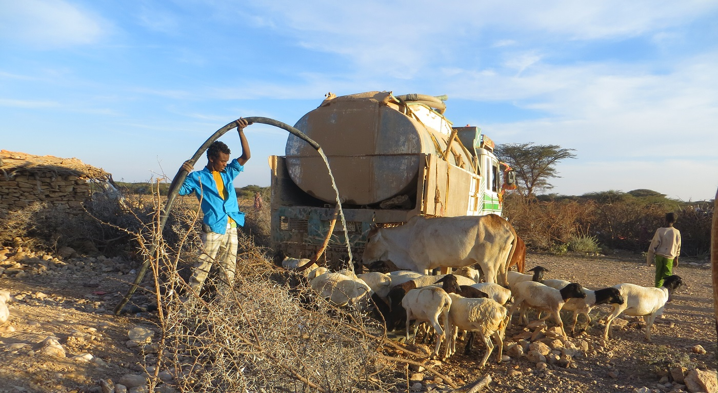Somaliland Water Tankering For Animals