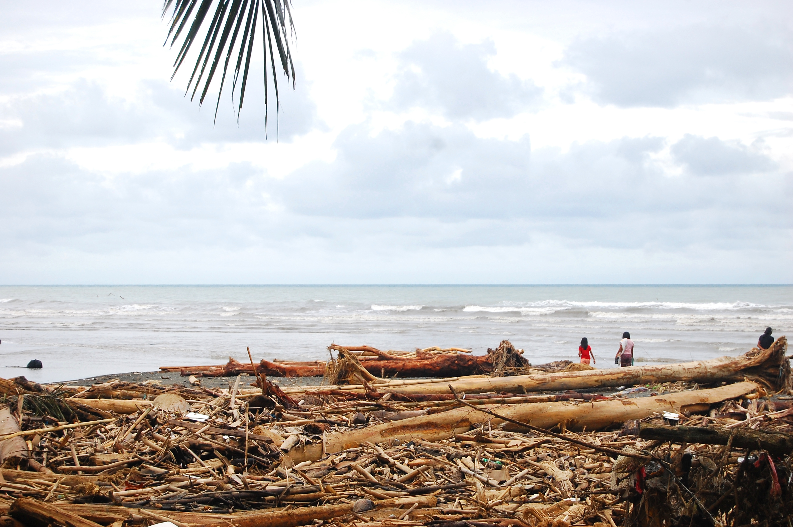 A Beach Dumped With Logs And Garbage After A Typhoon Sendong Washi In Iligan City, Philippines.